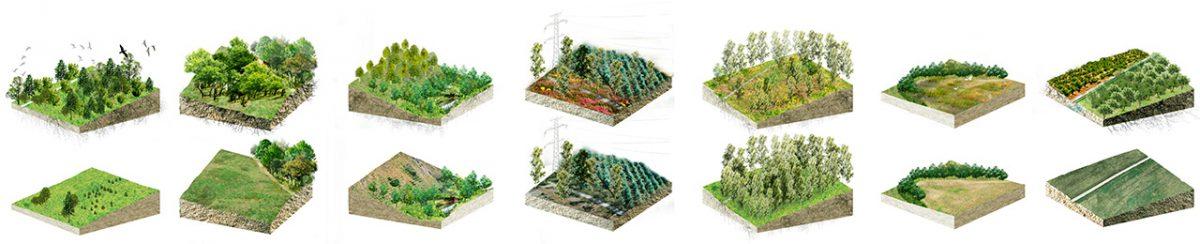 Pazo de Quián landscape blocks